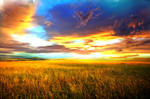 Premade Background Nature Stock 041