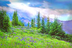 Premade Background Nature Stock 042