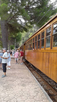 Electric train of Soller