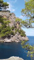 Palma of Mallorca