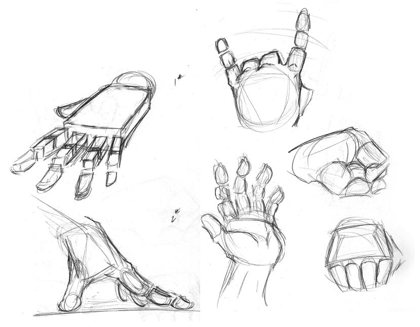 Hand Study by TwilightsDon