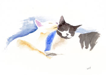 Two Cats by rod-roesler