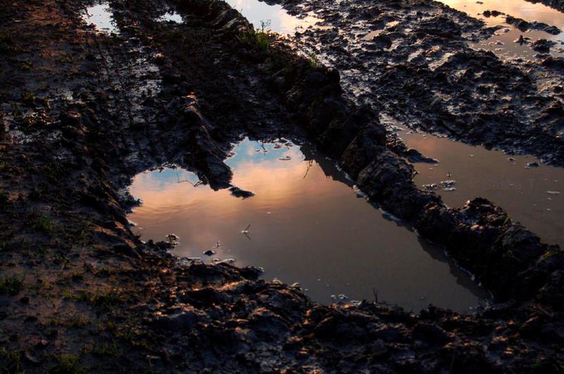 Mud heart by AleksandraTorbina