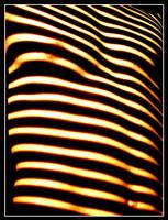 Linear Zebraman by rembrandt83