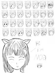Noa Expressions