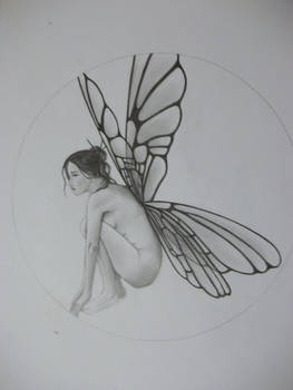 fairy in progress