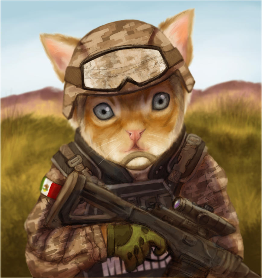 Cat soldier by Capitan-Mark-Antony