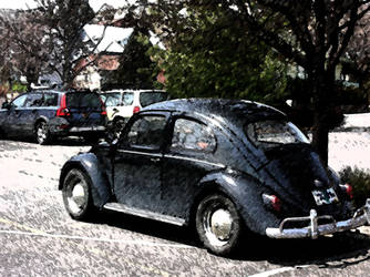 Beetle paint photo by Davaughanbro2