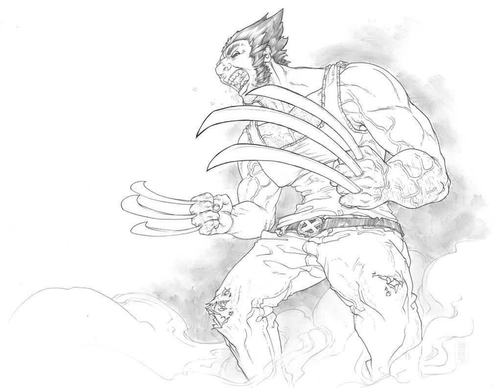 Wolverine + FREE mvc3 by fydbac