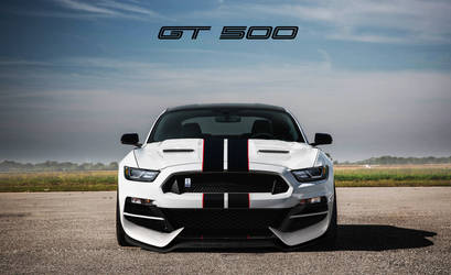 Jhonconnor 8 0 2018 Ford Mustang Gt500 Alternative By