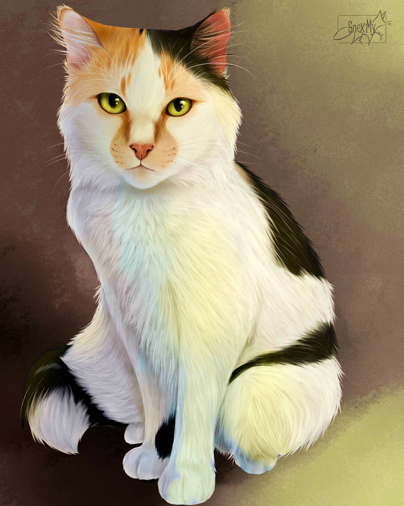 .: Cat Realistic by SnexMy