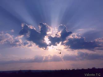 Happy flying my friend... by valentin1983