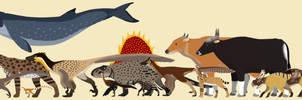 Troodonvet's DA animal compilation 2017