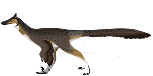 Troodon formosus (REDESIGNED)