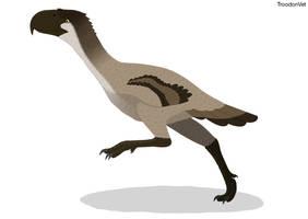 Dinovember Day 19: Titanis walleri by TroodonVet
