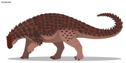 Paleo Drawing: Borealopelta markmitchelli