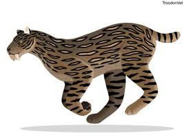 Indonesian Fauna: Megantereon sp