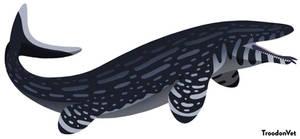 Paleo Drawing: Mosasaurus hoffmanni (REDRAW)