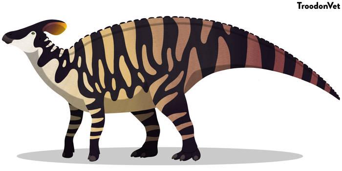 Paleo Drawing: Tlatolophus galorum