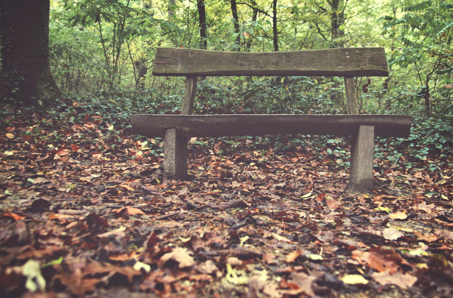 bench by pauljavor