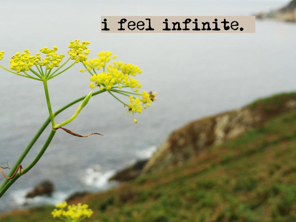 Perks Of Being A Wallflower Quotes Infinite Wallpaper ...