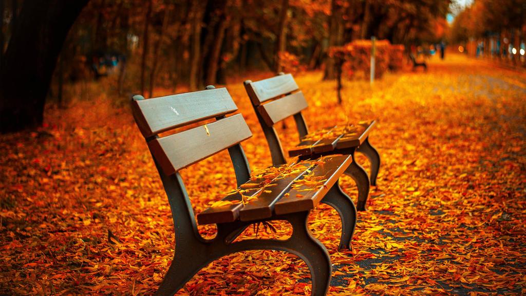 autumn bench-HD by carmensecretsx