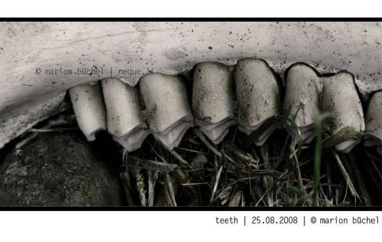 .:.teeth.:.