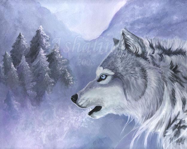 Winter Breath WilkiCold Breath In Winter