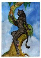 Catnip by Ashalind