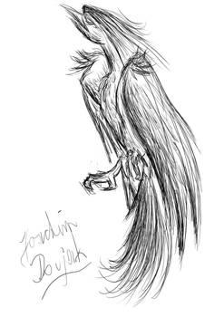 Tablet-Zeichnungen: Phoenix