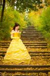 Belle - the Beast's rose