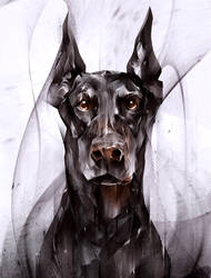 doberman by KHIUS