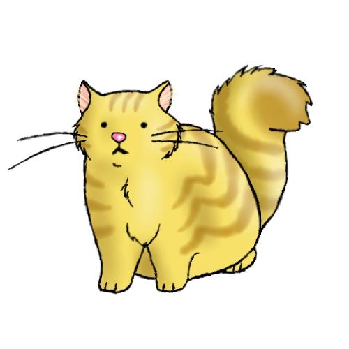 Cute Fat Kitty 46