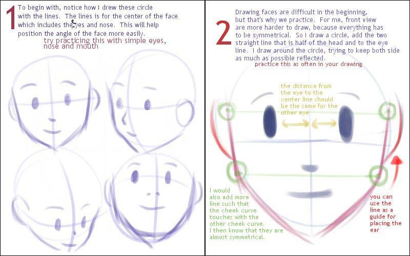 Displaying (19) Gallery Images For Face Proportions Drawing...