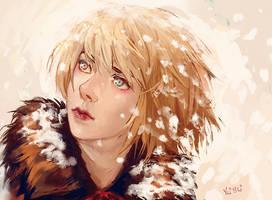 Blizzard by NerinFox