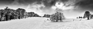 Winter downhill no.2