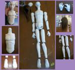 Doll progress