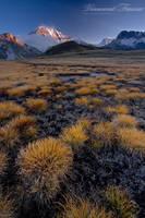 Bolivian moment by vincentfavre