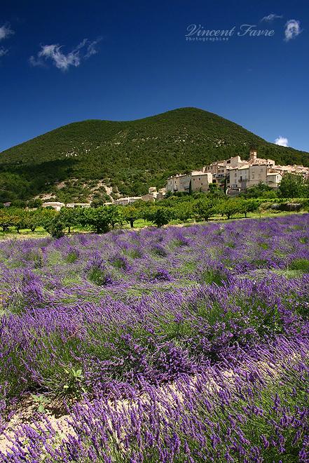 Venterol, la Provence... by vincentfavre