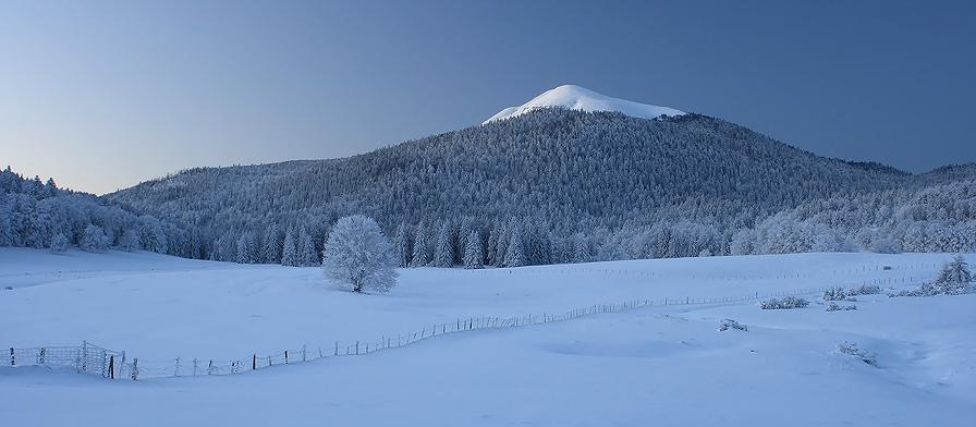 20C below zero... by vincentfavre