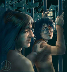 I love him, Sirius by ildi
