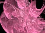 The Pink by Vanshira