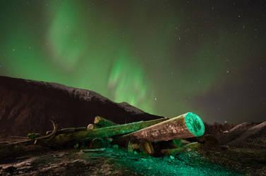 Green Log by spoox