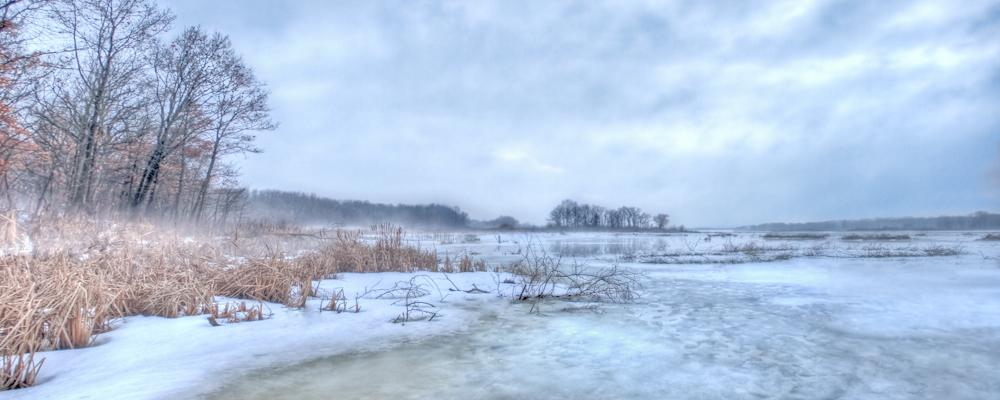 Dark Mist by jvrichardson
