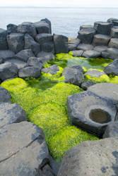 Giant's Causeway II