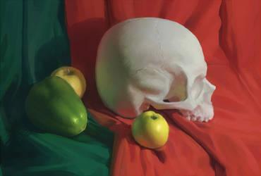 Skull study by Nikki-67