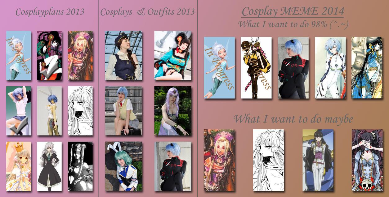 Cosplay MEME 2014 by Mokuyo