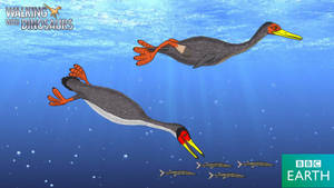 Walking with Dinosaurs: Hesperornis
