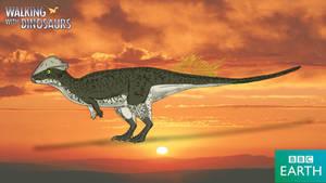 Walking with Dinosaurs: Stegoceras