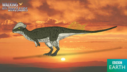 Walking with Dinosaurs: Stegoceras by TrefRex